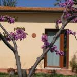 Esterno Agriturismo Diciocco in Toscana tra la campagna e il mare