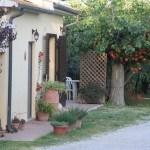 Dettagli dell'Agriturismo Diciocco in Toscana tra la campagna e il mare