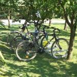 Gite in bici al Diciocco, agriturismo per famiglie in Toscana